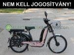 VELION CHR18 erősített vázas elektromos kerékpár - CK468556- 06705125161