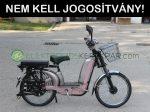 VELION CHR18 erősített vázas elektromos kerékpár - CK740095 - 06705125161